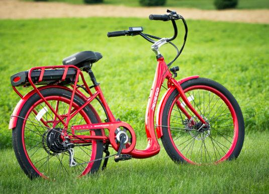 Private Electric Bike Tour